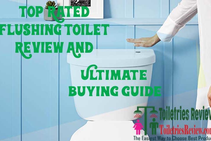 Top-Rated Flushing Toilets of 2019 With Ultimate Buying Guide