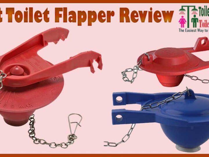 10 Best Toilet Flapper Review of 2021